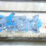 DSCN2081 (Small)