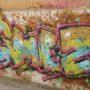 DSCN2613 (Small)